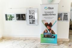 zos_amfo_2020_vystava-1