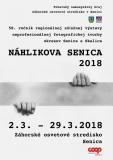 zos_nahlikova_senica_2018_plagat