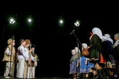 ZOS SENICA_DFS SKALICA 2017_073